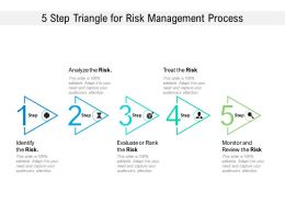 5 Step Triangle For Risk Management Process