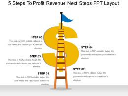 5 Steps To Profit Revenue Next Steps Ppt Layout