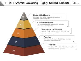 5 Tier Pyramid Covering Highly Skilled Experts Full Time Employees And Modular Workers