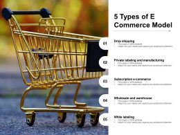 5 Types Of E Commerce Model