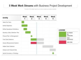 5 Week Work Streams With Business Project Development