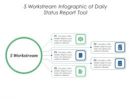5 Workstream Of Daily Status Report Tool Infographic Template