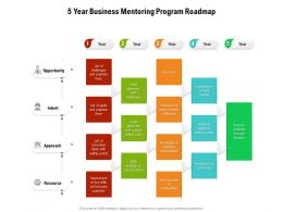 5 Year Business Mentoring Program Roadmap