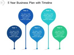 5 Year Business Plan With Timeline
