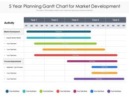 5 Year Planning Gantt Chart For Market Development