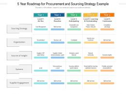 5 Year Roadmap For Procurement And Sourcing Strategy Example