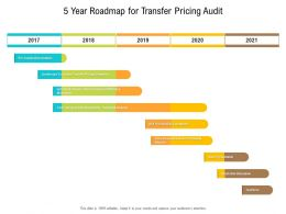 5 Year Roadmap For Transfer Pricing Audit
