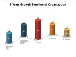 5 Years Growth Timeline Of Organization