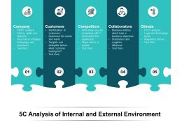 5C Analysis Of Internal And External Environment