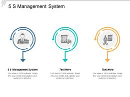 5s Management System Ppt Powerpoint Presentation Professional Good Cpb
