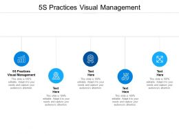 5S Practices Visual Management Ppt Powerpoint Presentation Slides Templates Cpb