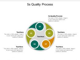 5s Quality Process Ppt Powerpoint Presentation File Clipart Cpb