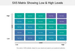 5x5 Matrix Showing Low And High Levels