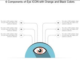 6 Components Of Eye Icon With Orange And Black Colors