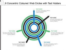 6 Concentric Coloured Web Circles With Text Holders