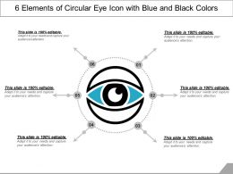 6 Elements Of Circular Eye Icon With Blue And Black Colors