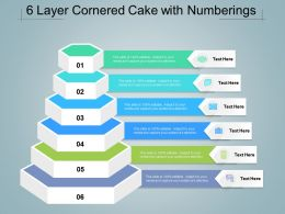 6 Layer Cornered Cake With Numberings