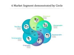 6 Market Segment Demonstrated By Circle