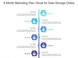 6 Month Marketing Plan Visual For Data Storage Online Infographic Template