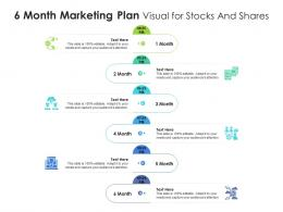6 Month Marketing Plan Visual For Stocks And Shares Infographic Template