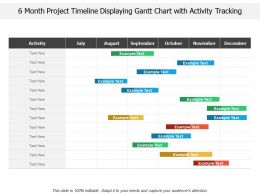 6 Month Project Timeline Displaying Gantt Chart With Activity Tracking
