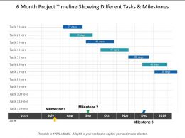 6 Month Project Timeline Showing Different Tasks And Milestones