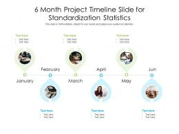 6 Month Project Timeline Slide For Standardization Statistics Infographic Template
