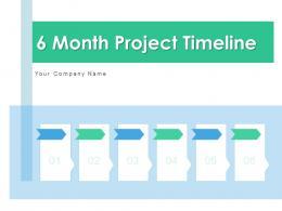 6 Month Project Timeline Venn Diagram Developer Statistics Primary
