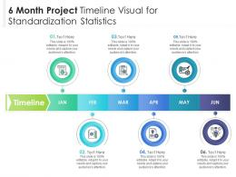 6 Month Project Timeline Visual For Standardization Statistics Infographic Template