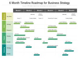 6 Month Timeline Roadmap For Business Strategy