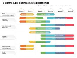 6 Months Agile Business Strategic Roadmap