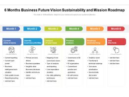 6 Months Business Future Vision Sustainability And Mission Roadmap