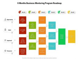 6 Months Business Mentoring Program Roadmap