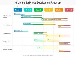 6 Months Early Drug Development Roadmap
