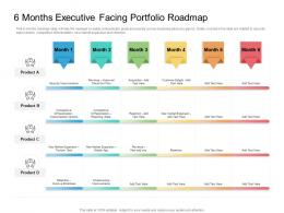 6 Months Executive Facing Portfolio Roadmap Timeline Powerpoint Template