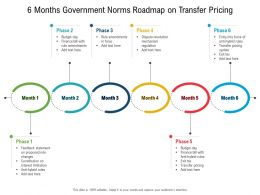 6 Months Government Norms Roadmap On Transfer Pricing