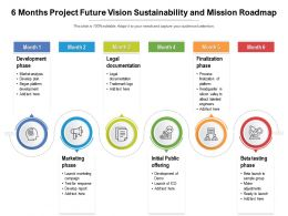 6 Months Project Future Vision Sustainability And Mission Roadmap
