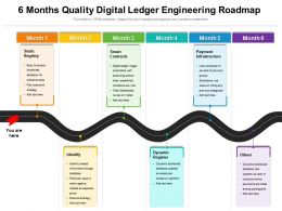 6 Months Quality Digital Ledger Engineering Roadmap