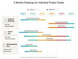 6 Months Roadmap For Individual Project Tracker