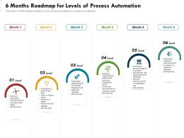 6 Months Roadmap For Levels Of Process Automation