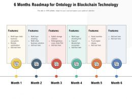 6 Months Roadmap For Ontology In Blockchain Technology