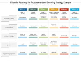 6 Months Roadmap For Procurement And Sourcing Strategy Example