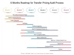 6 Months Roadmap For Transfer Pricing Audit Process
