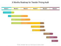 6 Months Roadmap For Transfer Pricing Audit