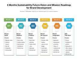 6 Months Sustainability Future Vision And Mission Roadmap For Brand Development