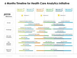 6 Months Timeline For Health Care Analytics Initiative