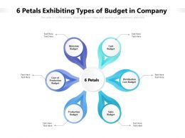 6 Petals Exhibiting Types Of Budget In Company