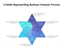 6 Petals Representing Business Analysis Process