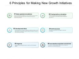 6 Principles For Making New Growth Initiatives