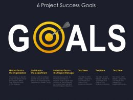 6 Project Success Goals